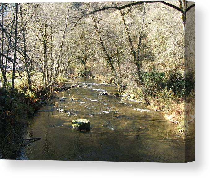 River Canvas Print featuring the photograph Sleepy Creek by Shari Chavira
