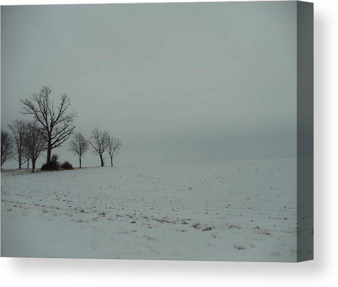 Landscape Canvas Print featuring the photograph Snowy Illinois Field by David Junod