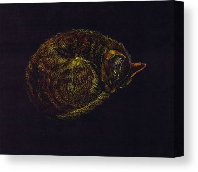 A Cat Soundly Asleep-oil Pastel Canvas Print featuring the painting Sound Asleep II by Mui-Joo Wee