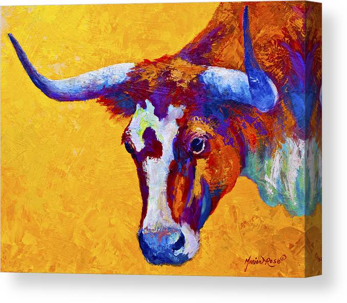 Longhorn Canvas Print featuring the painting Texas Longhorn Cow Study by Marion Rose