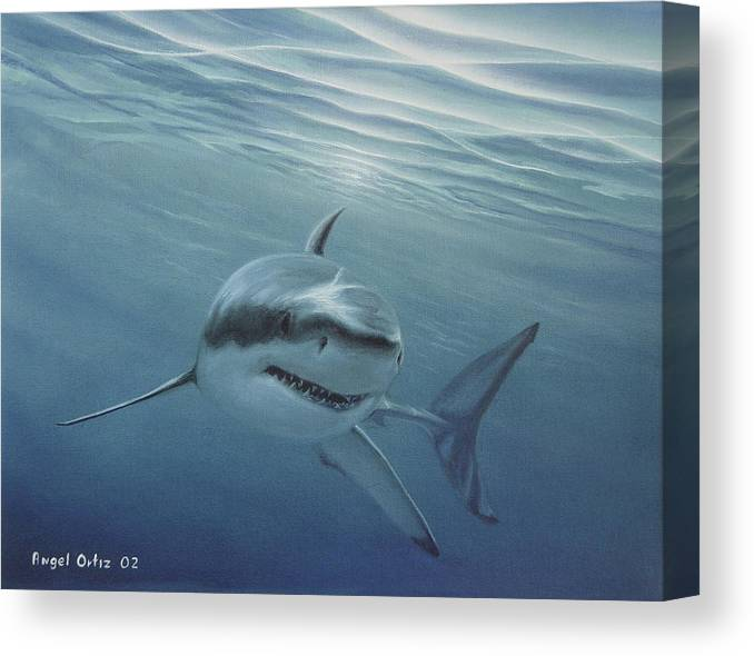 Shark Canvas Print featuring the painting White Shark by Angel Ortiz