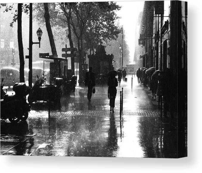 Holding Canvas Print featuring the photograph Many Thanks To The Rain by Julien Brachhammer