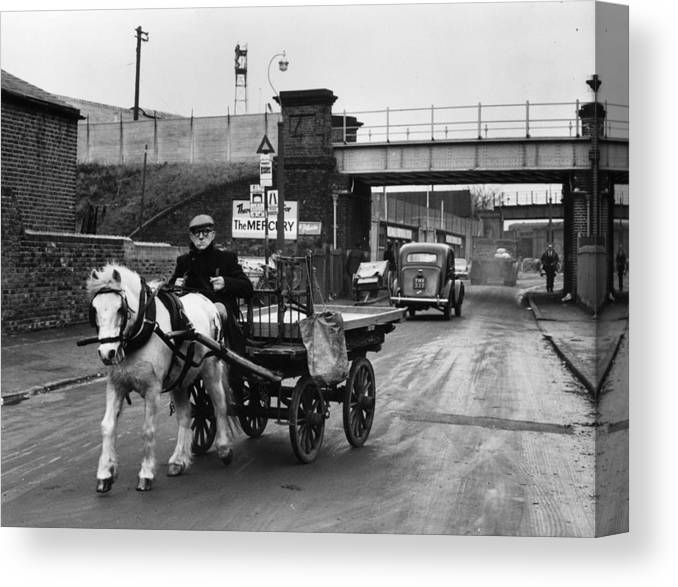 Horse Canvas Print featuring the photograph Rag And Bone Man by Cleland Rimmer
