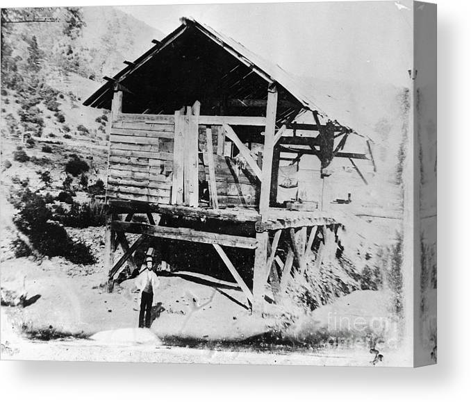 People Canvas Print featuring the photograph Sutters Mill by Bettmann