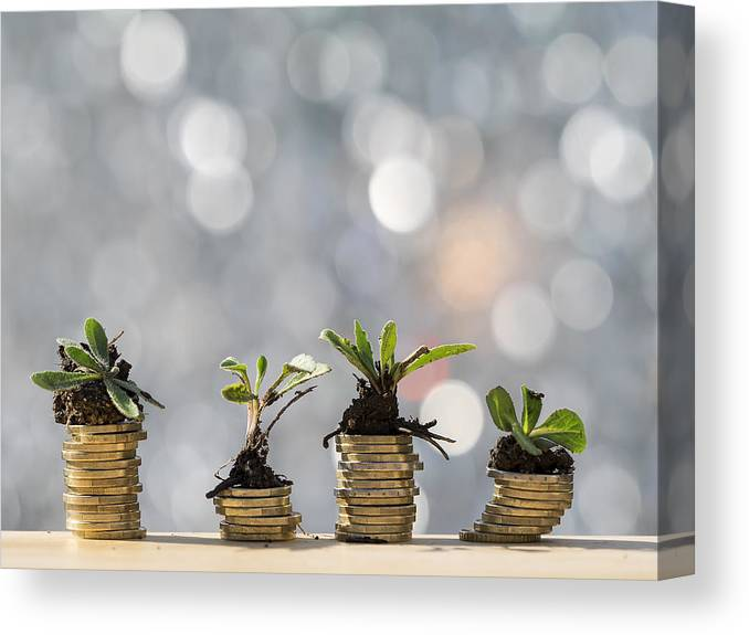 New Business Canvas Print featuring the photograph Heaps of coins of Euro with green natural plants it they are born, illuminated by the light of the sun by Jose A. Bernat Bacete