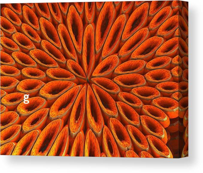 Canvas Print featuring the photograph Face Mask Orange by Getty Images