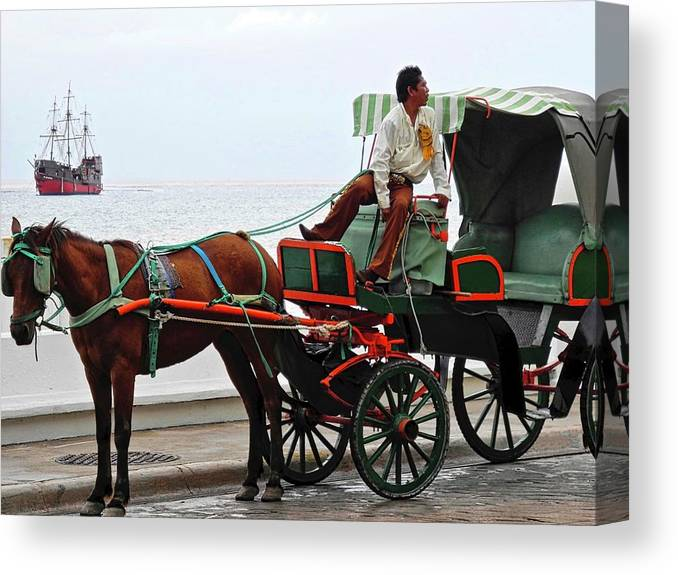 Horse Canvas Print featuring the photograph Lovely Transportation in Cozumel by Kirsten Giving