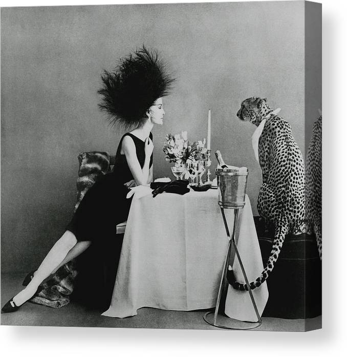 Animal Canvas Print featuring the photograph A Model With A Cheetah by Leombruno-Bodi