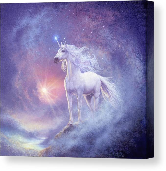 Steve Read Canvas Print featuring the photograph Astral Unicorn by MGL Meiklejohn Graphics Licensing