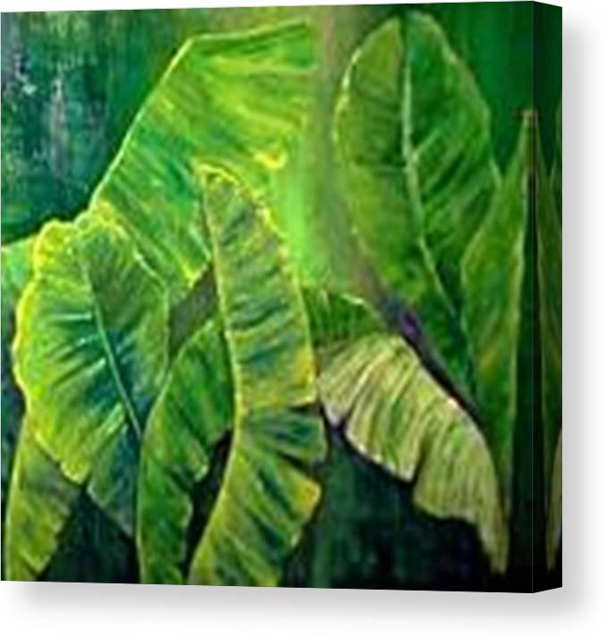 Canvas Print featuring the painting Banana Leaves by Carol P Kingsley