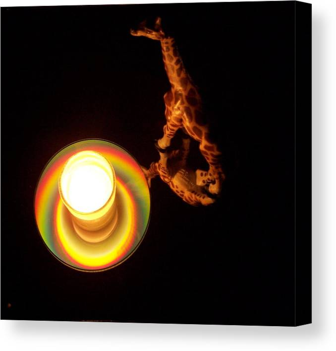 Giraffe Canvas Print featuring the photograph Illuminated Objects by Michelle Miron-Rebbe