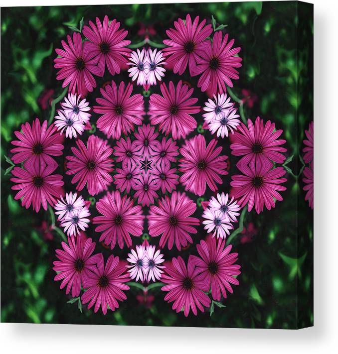 Mandala Canvas Print featuring the photograph Mandala Mum Rosas by Nancy Griswold