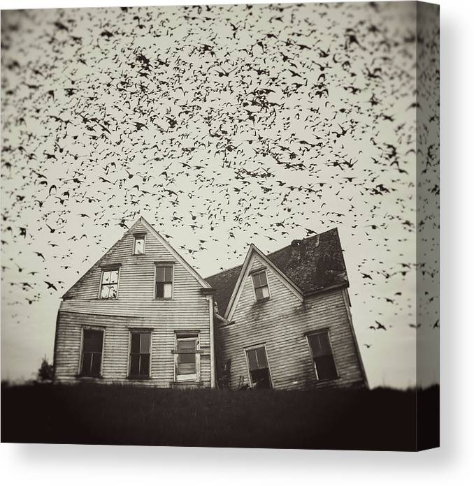 Spooky Canvas Print featuring the photograph Home Of Murmuration by Shaunl