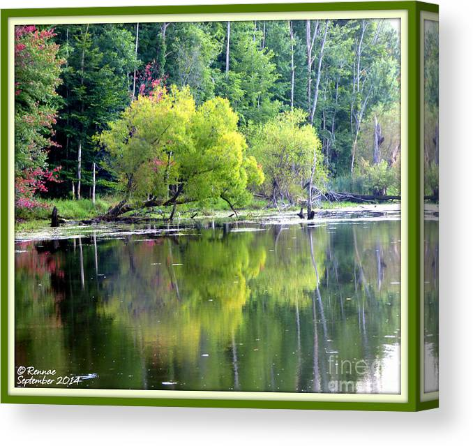 Water Canvas Print featuring the photograph Reflections by Rennae Christman