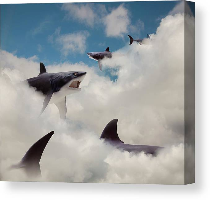 Risk Canvas Print featuring the photograph Sharks Floating In Clouds by John M Lund Photography Inc