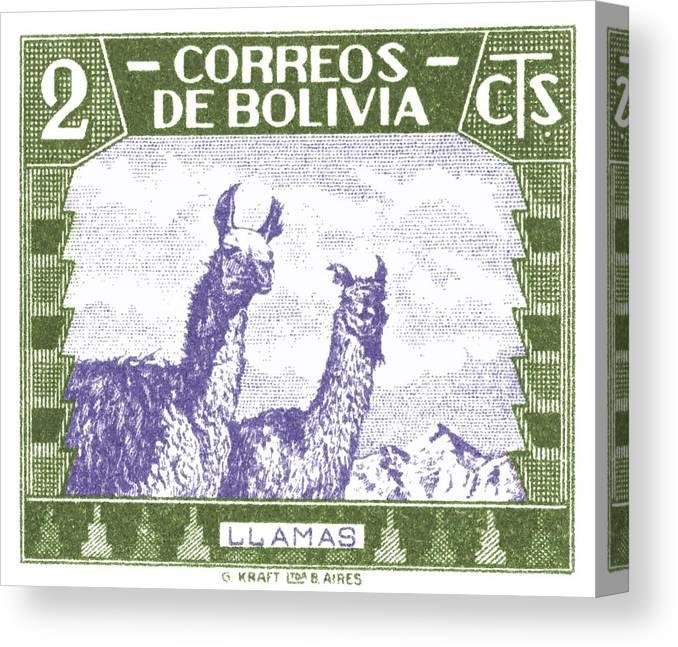 Bolivia Canvas Print featuring the digital art 1939 Bolivia Llamas Postage Stamp by Retro Graphics