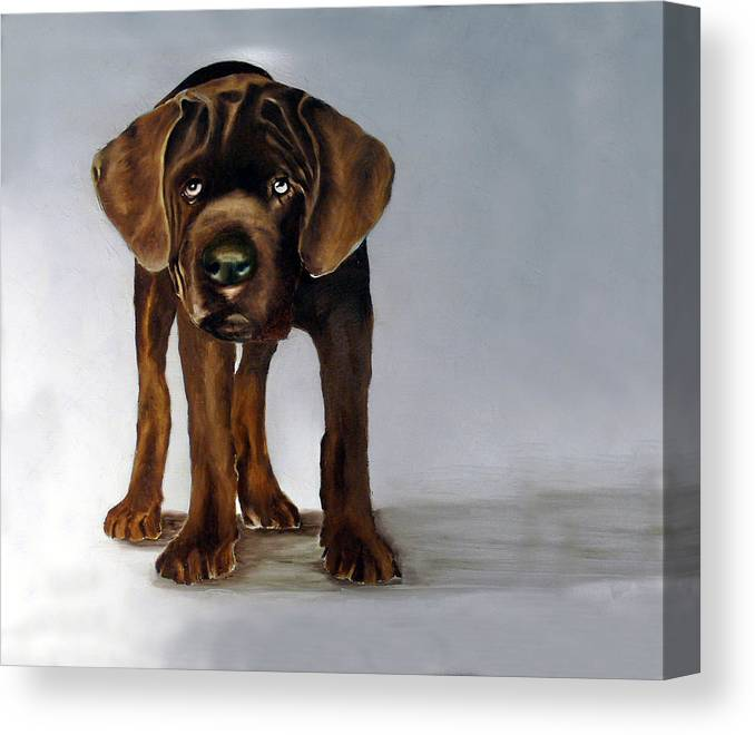 Canvas Print featuring the painting Chocolate Labrador Puppy by Dick Larsen