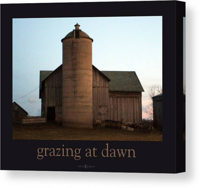 Barn Canvas Print featuring the photograph Grazing at Dawn by Tim Nyberg
