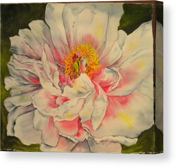 Floral Canvas Print featuring the painting Peony by Diane Ziemski