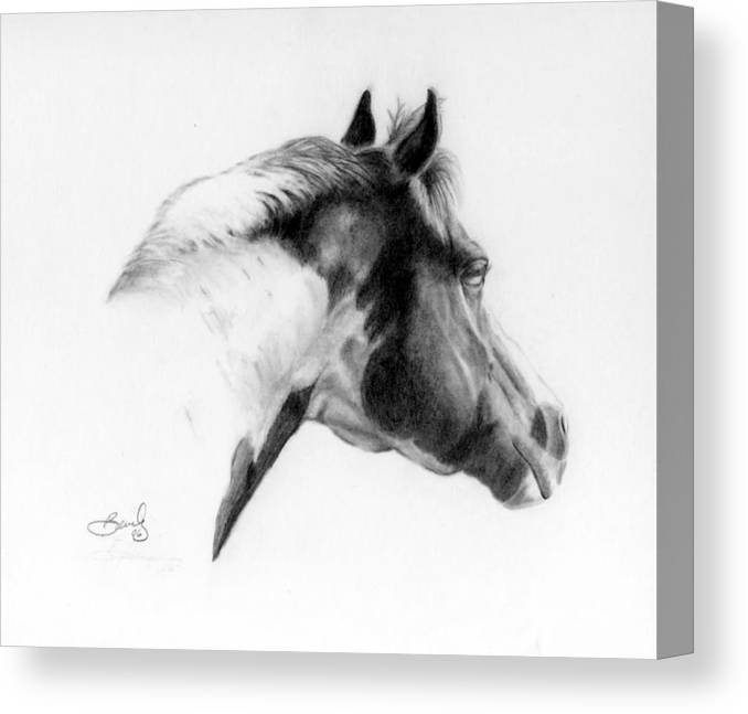 Pencil Drawing Canvas Print featuring the drawing Racer by Beverly Johnson
