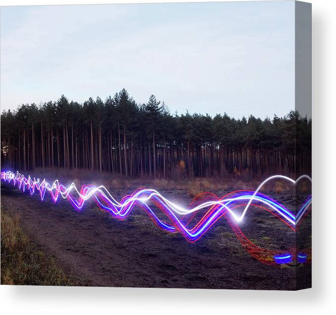 Internet Canvas Print featuring the photograph Red, Blue And White Light Trails On by Tim Robberts
