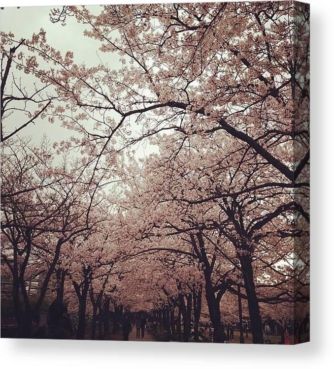 Landscape Canvas Print featuring the photograph #landscape by Tokyo Sanpopo