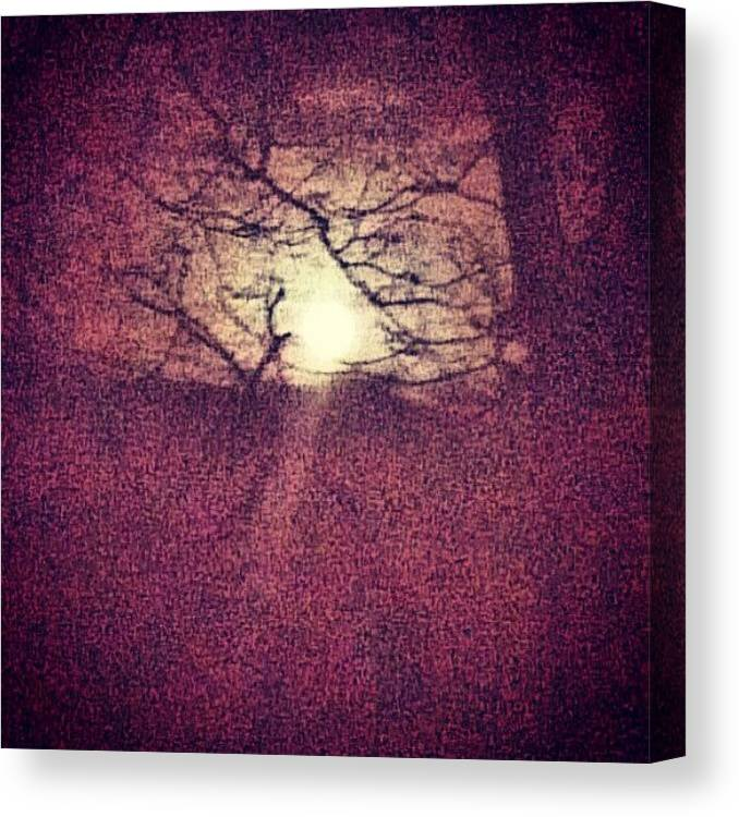 Skyline Canvas Print featuring the photograph Antique Moon Abstract by Genevieve Esson