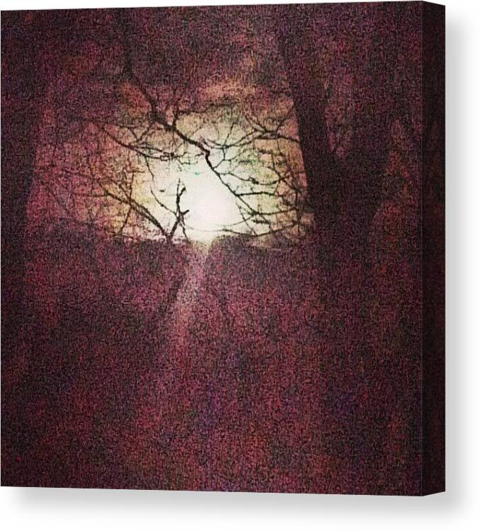 Skyline Canvas Print featuring the photograph Antique Moon by Genevieve Esson