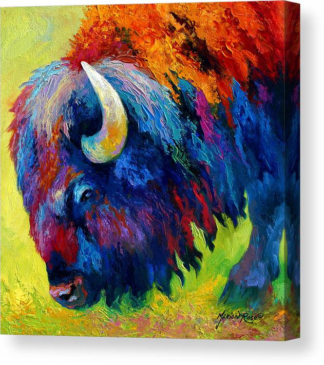 Wildlife Canvas Print featuring the painting Bison Portrait II by Marion Rose