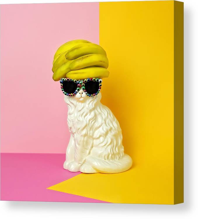 Statue Canvas Print featuring the photograph Cat Wearing Sunglasses And Banana Wighat by Juj Winn