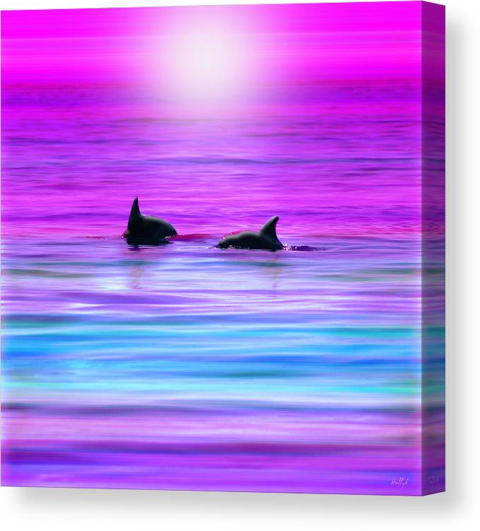 Seascapes Canvas Print featuring the photograph Cruisin' Together by Holly Kempe