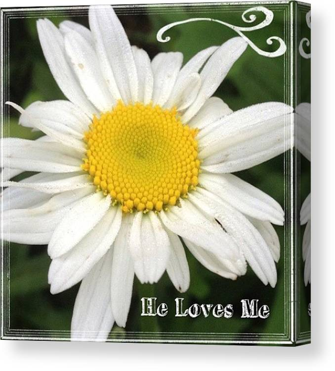 Flower Canvas Print featuring the photograph #daisy #doodle #helovesme #flower by Teresa Mucha