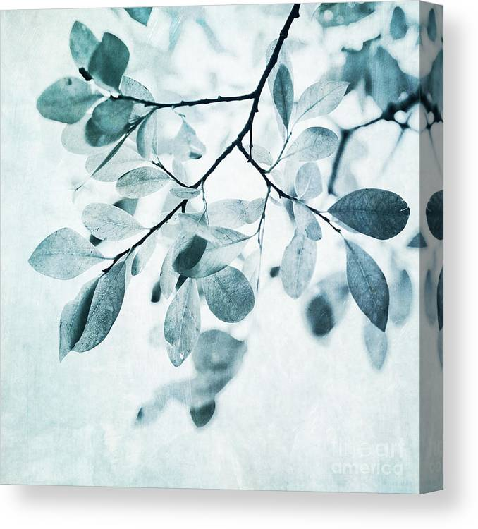 Foliage Canvas Print featuring the photograph Leaves In Dusty Blue by Priska Wettstein