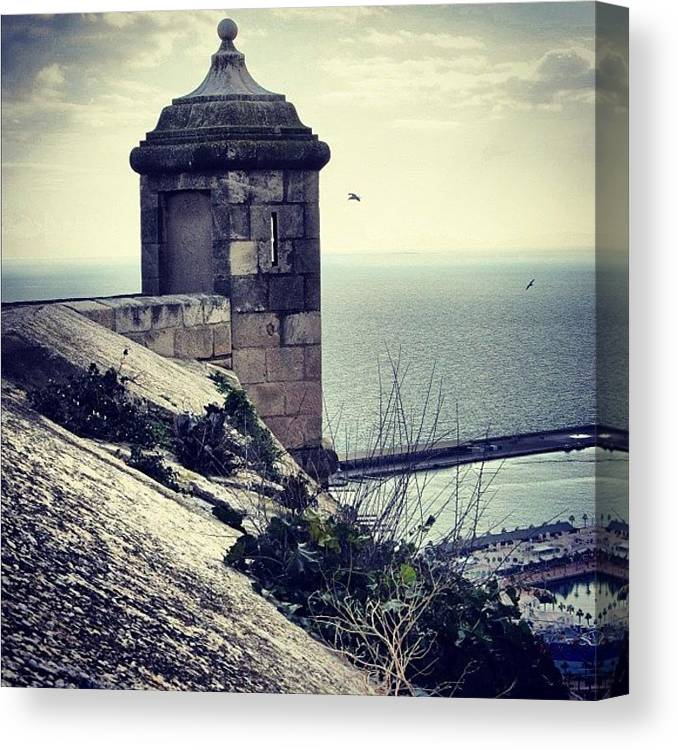 Life Canvas Print featuring the photograph #mgmarts #spain #alicante #view #nature by Marianna Mills