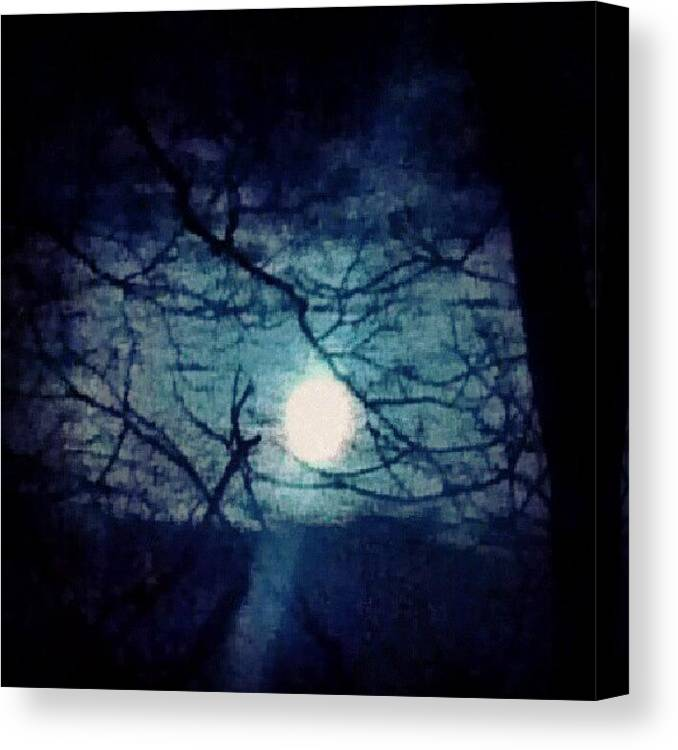 Skyline Canvas Print featuring the photograph Moon Framed By Tree Branches by Genevieve Esson