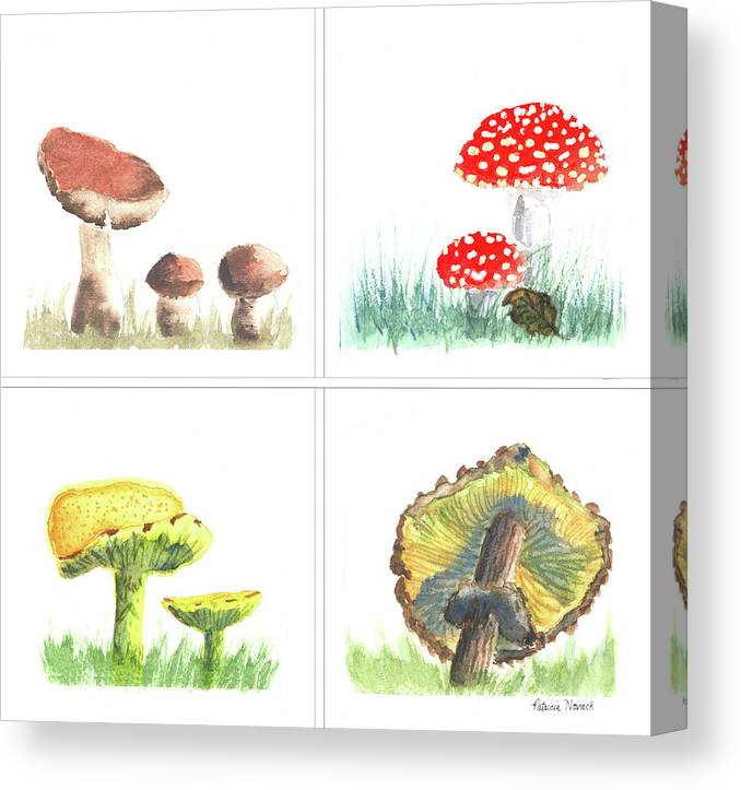 Mushroom Canvas Print featuring the painting Mushrooms On Parade Collage by Patricia Novack