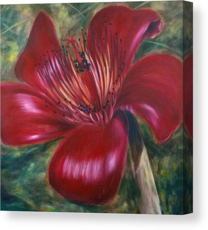 Flower Canvas Print featuring the painting Red Silk Cotten Bombex by Larry Palmer