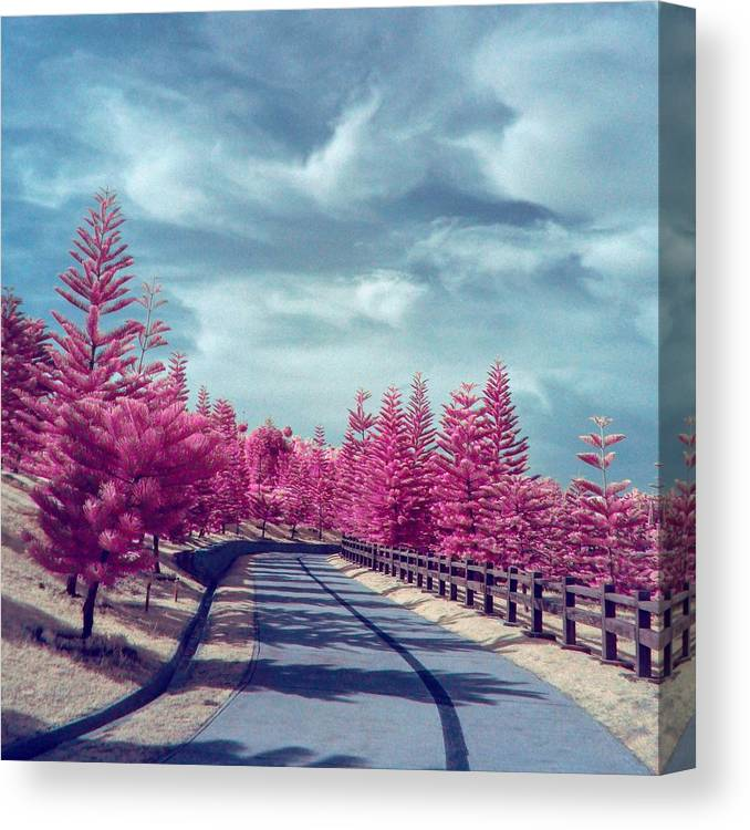 Surreal Nature Scenery With Pink Trees Canvas Print Canvas Art