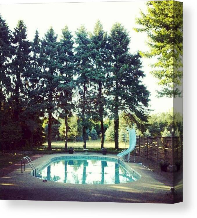 Pine Tree Canvas Print featuring the photograph That Pool Looks Nice And Cool by Jill Tuinier