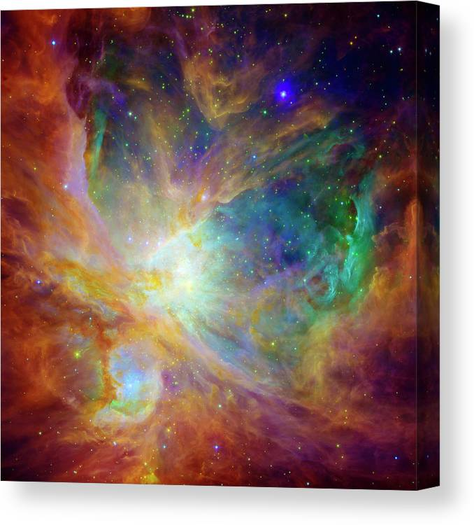 Universe Canvas Print featuring the photograph The Hatchery by Jennifer Rondinelli Reilly - Fine Art Photography
