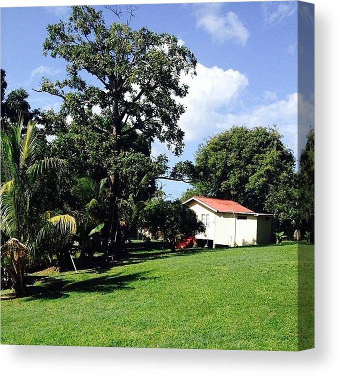 Myhome Canvas Print featuring the photograph Tobago Is Looking Beautiful!!! by Patsy Ramsahai