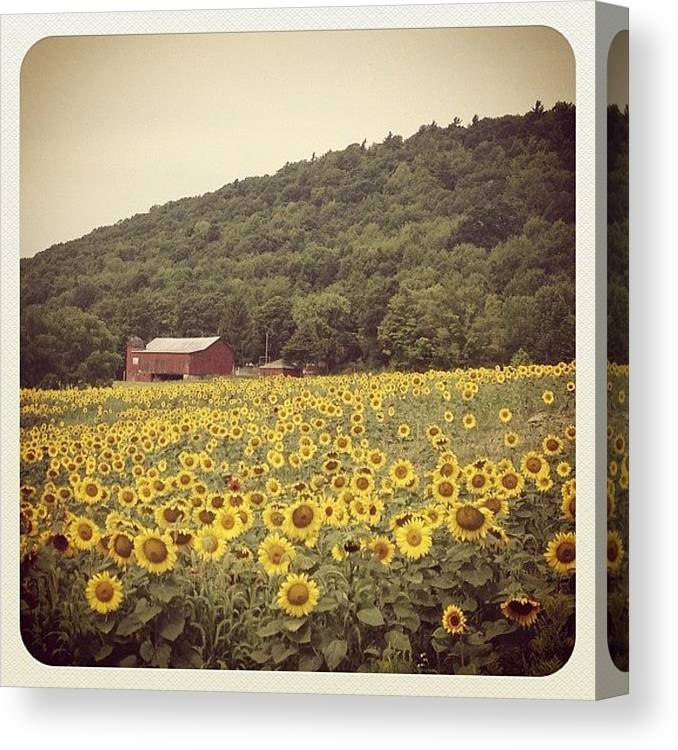 Beautiful Canvas Print featuring the photograph Upstate by Mike Maher