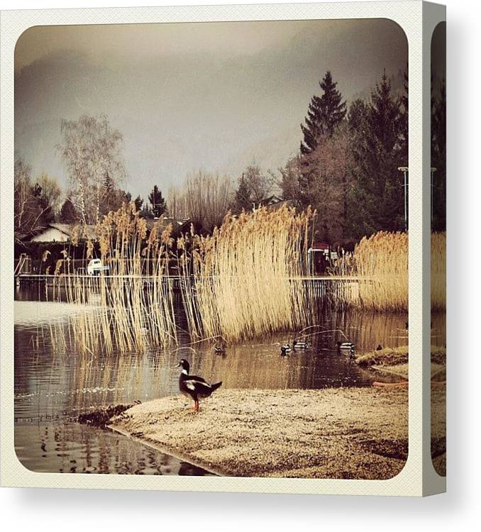 Beautiful Canvas Print featuring the photograph A Cloudy Day by Luisa Azzolini