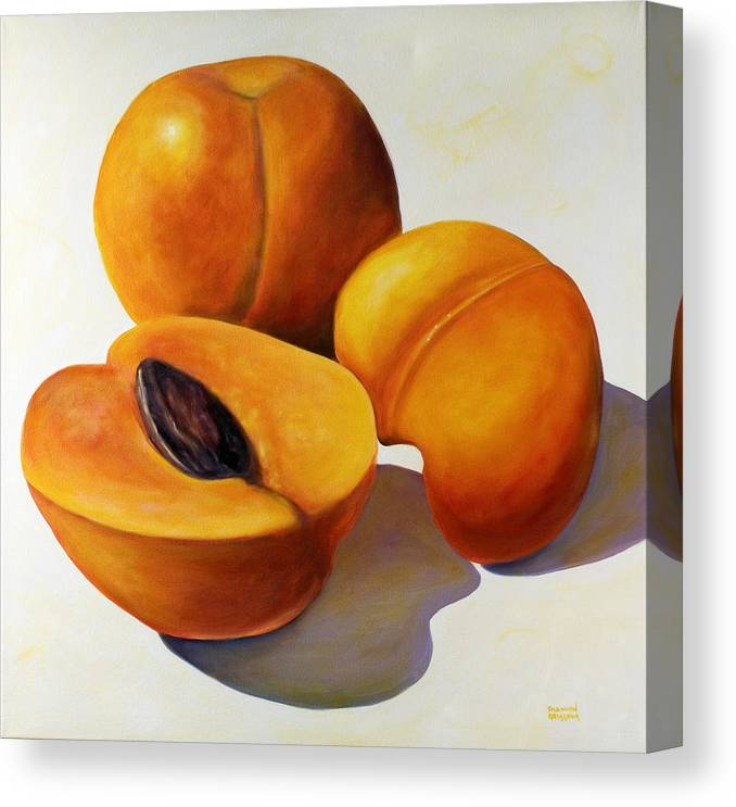 Apricots Canvas Print featuring the painting Apricots by Shannon Grissom