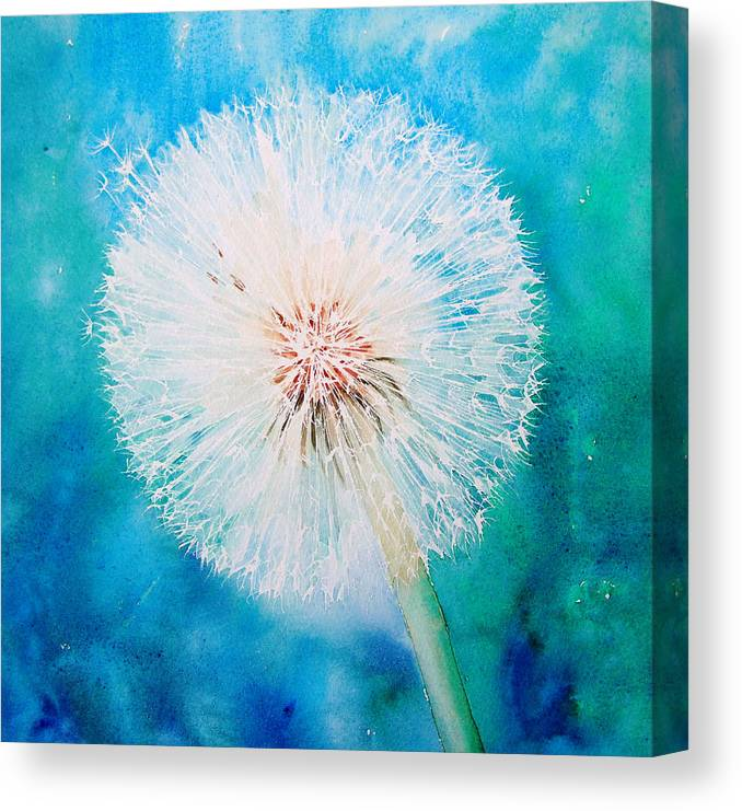 Poster Beautiful Dandelion With Seeds Room Art Wall Cloth Print 9