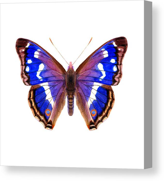 Canvas Print featuring the painting Purple Emperor Butterfly by Alison Langridge