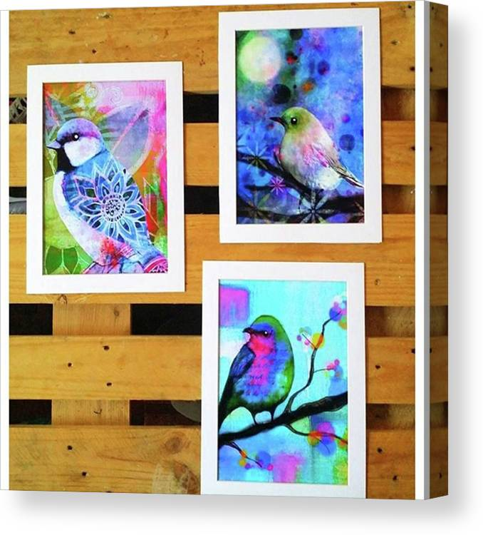 Canvas Print featuring the photograph *sale* 3 11 X 14 In. Bird Prints With by Robin Mead