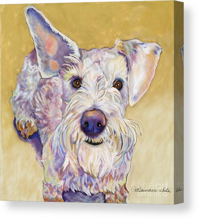 Schnauzer Canvas Print featuring the pastel Scooter by Pat Saunders-White