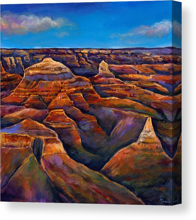 Landscapes Canvas Print featuring the painting Shadow Canyon by Johnathan Harris