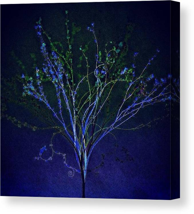 Augustine Canvas Print featuring the photograph Since Love Grows Within You by Nick Heap